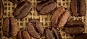 وارد-کننده-قهوه-چیست؟