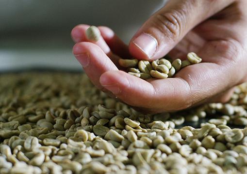 قهوه-بدون-کافئین-–-دلیل-چیست؟