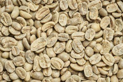 قهوه-سبز-کنیا-aa-+-انواع-مختلف-–-+-قهوه-تخصصی-کوه-کنیا-aa
